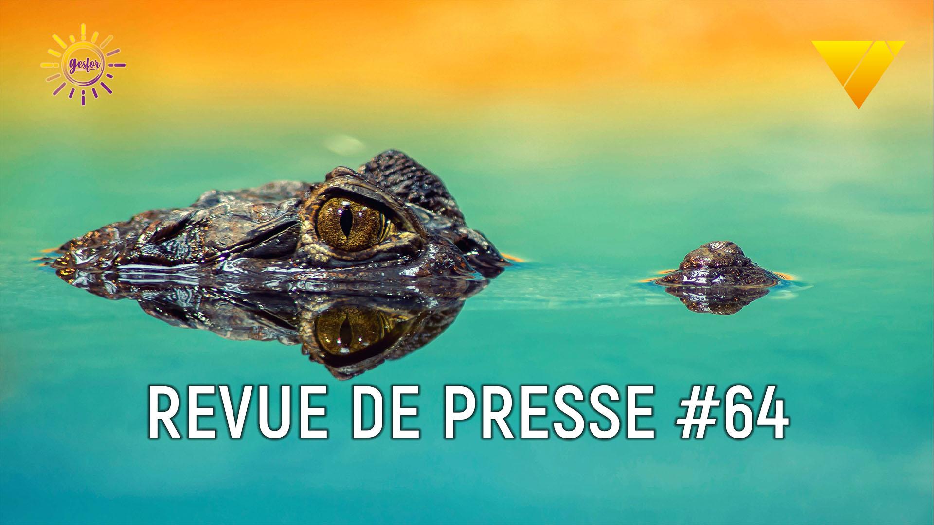 illustration de la revue de presse n°64 en accidentologie du travail avec un crocodile